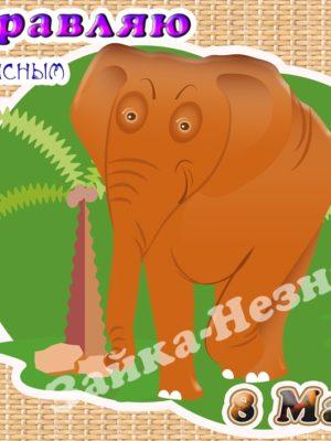слон поздравляет