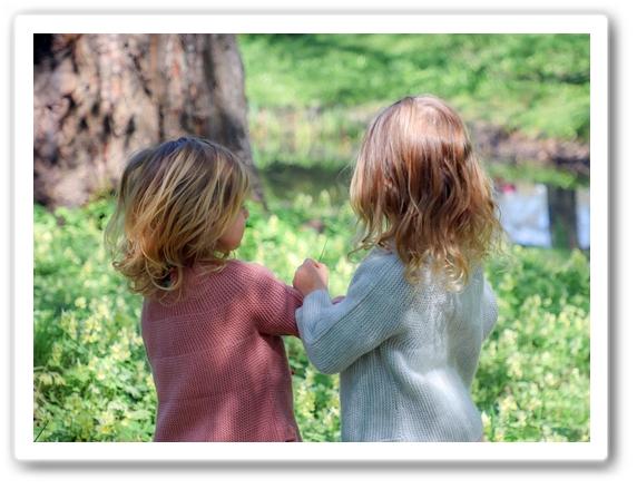 Ссора детей. Решение конфликта.