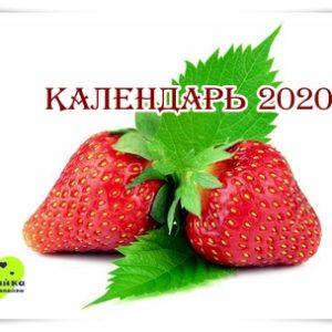 Календарь 2020 настенный.