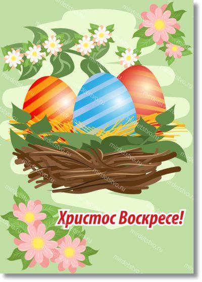 Гнездо и яйца